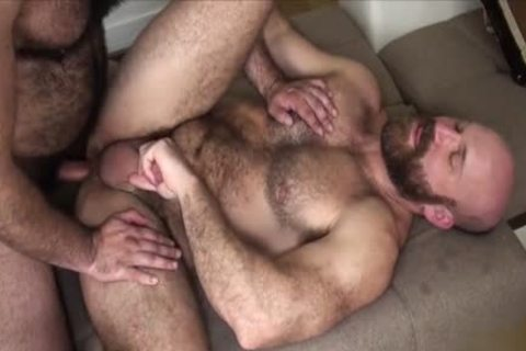 bushy Bear bare And ejaculation