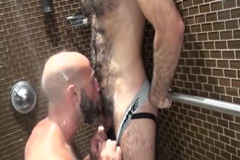 hairy Bear oral With sex cream flow