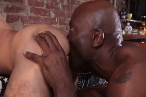 I Love gay Porn - TF-TakeThat darksome dick White twink